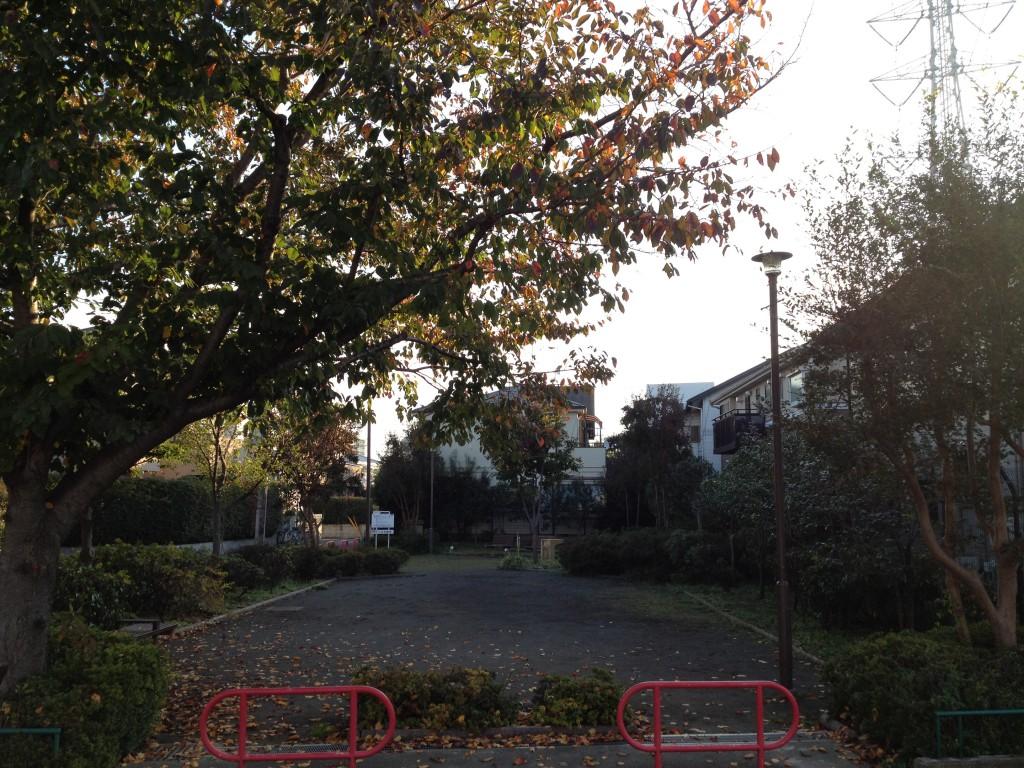 家の前の公園