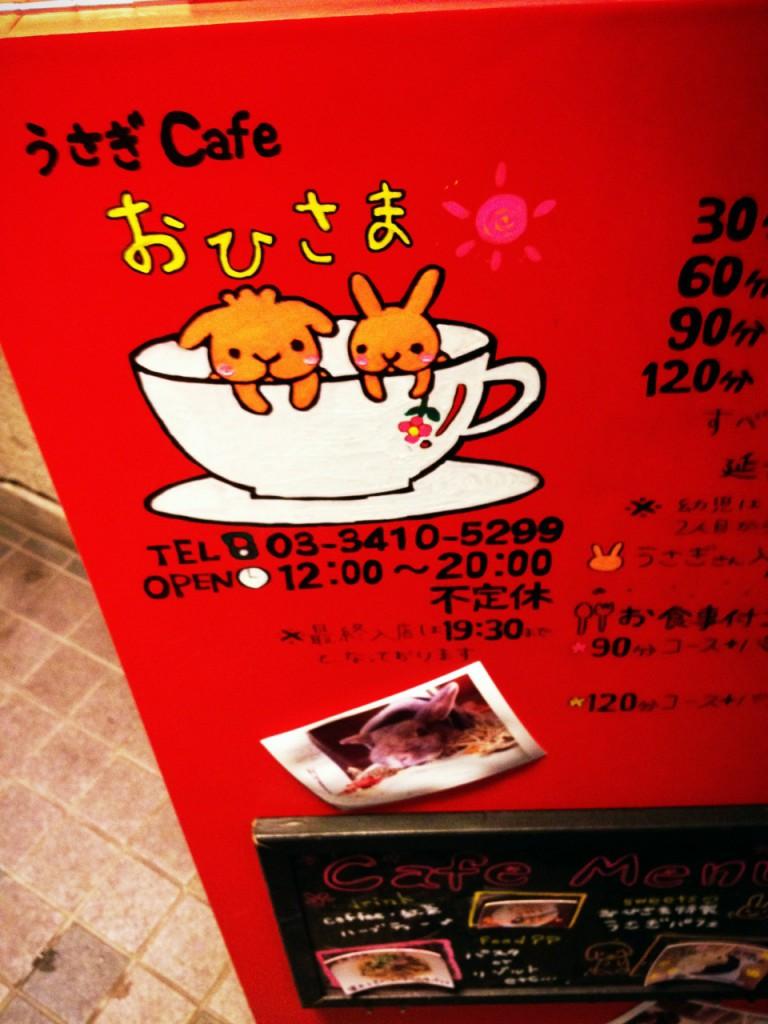 うさぎカフェの画像